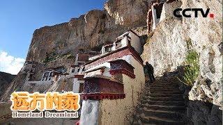 本期节目主要内容: 青藏高原,平均海拔4000米左右,这里气候寒冷、干燥...