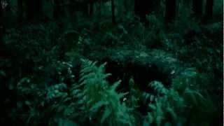 Deep In The Woods [яɛℓσα∂ɛ∂] Book Trailer