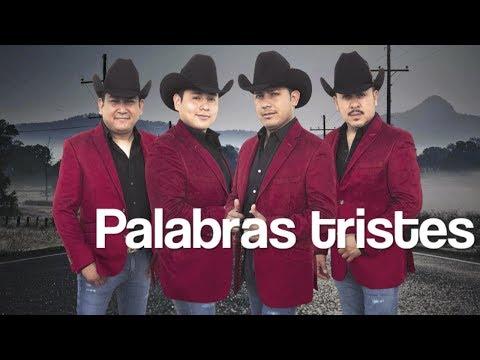 Los Carnales de Nuevo León - Palabras tristes ft. Arnulfo López Jr. (Video Lyric)