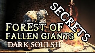 Dark Souls 2 Secrets: FOREST OF FALLEN GIANTS/CARDINAL TOWER!