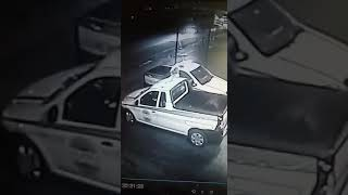 Alpha Security officer Murder in South Africa