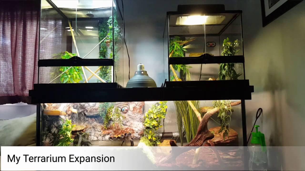 Diy Custom Reptile Enclosure Terrarium Vivarium Exo Terra