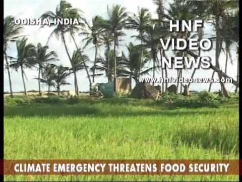 Climate change impacts agriculture and threatens Food Security