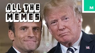 Trump and Macron Digging a Tree - All The Memes