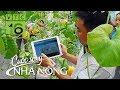 Báo Đồng Nai: Nông dân Đồng Nai làm 'nông nghiệp thông minh'