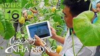 """Nông dân Việt """"đổi đời"""" nhờ nông nghiệp 4.0  I VTC16"""