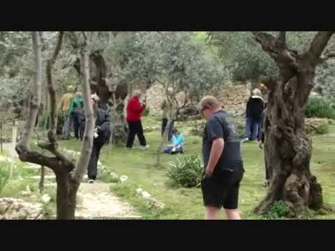 The Garden of Gethsemane Jerusalem Israel YouTube