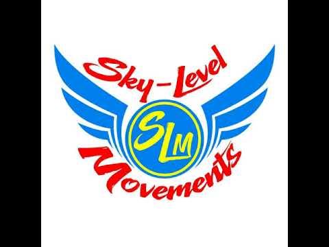 SKY LEVEL MOVEMENT'S REGGEA MIX
