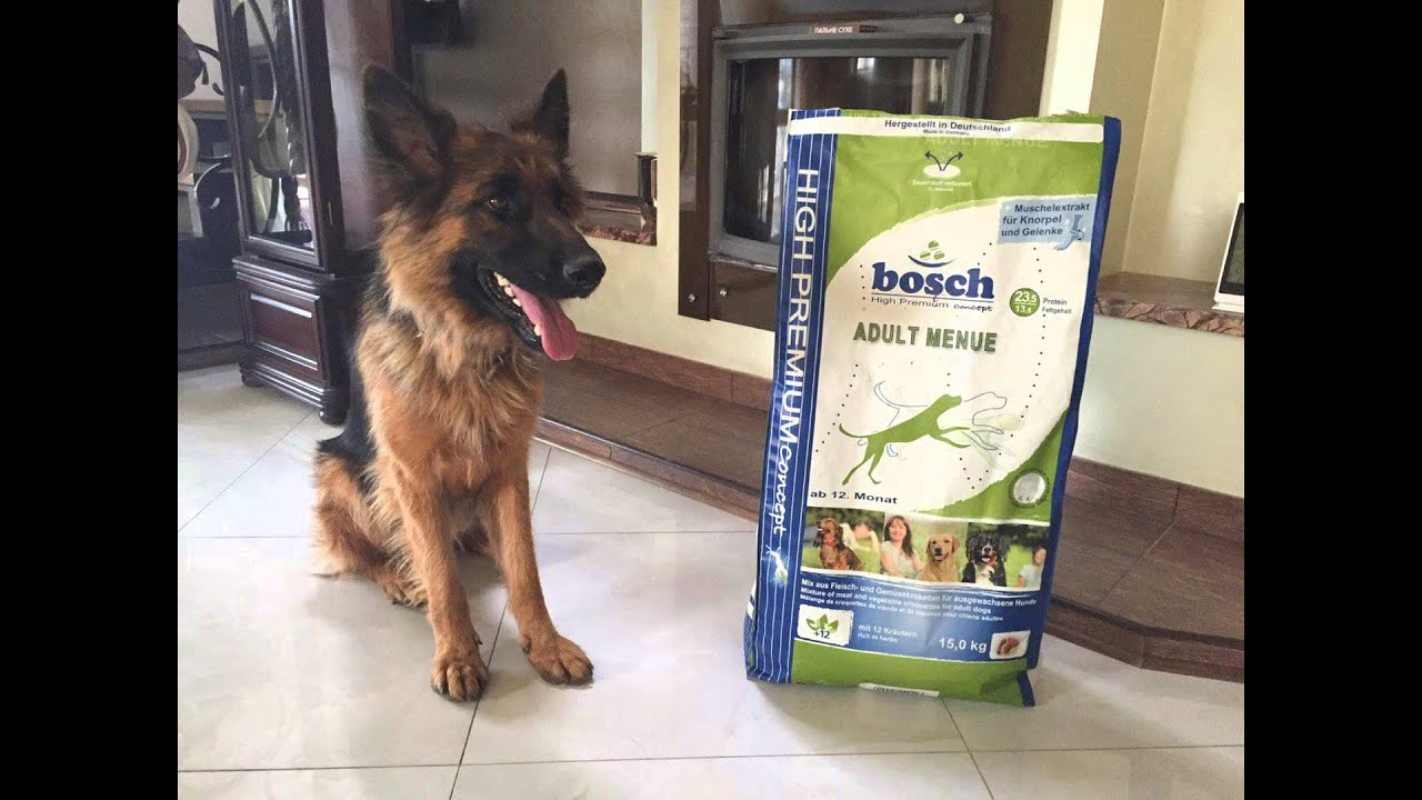 Сухой корм для собак супер премиум класса bosch купить корм для собак по оптовым ценам в интернет-магазине афина с доставкой по москве и россии.