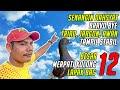 Lomba Merpati Kolongan  Besar Di Lapak Bac Jambi  Mp3 - Mp4 Download