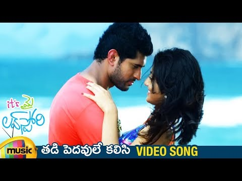 Its My Love Story Movie Songs - Thadi Pedavule Kalisi Song - Aravind Krishna, Nikhita