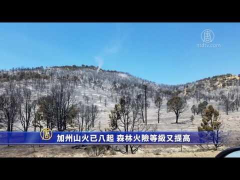 加州山火已八起 森林火险等级又提高(消防人员_国家森林)