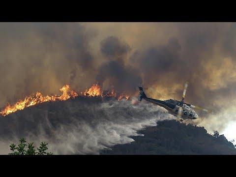 Los Angeles wildfires: City declares emergency