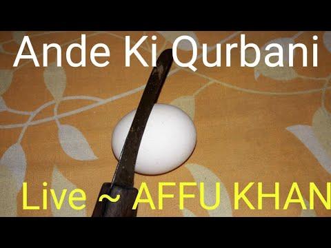 ande-ki-qurbani-|-अंडे-की-क़ुर्बानी-|-ande-/-egg-ki-qurbani-..-exposed-gumrah-muqallid---by-affu-khan