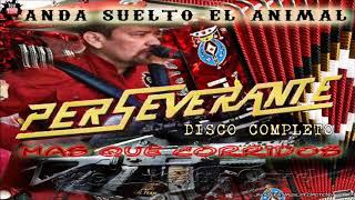 Perseverante .- DISCO COMPLETO [Anda Suelto El Animal] FullAlbum+Link