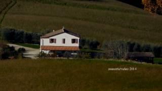 Montelparo Marche, Agricamp Picobello (manortiz)