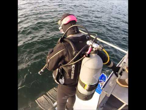 Groovy Night Boat Dive - Scuba Shoppe Seattle