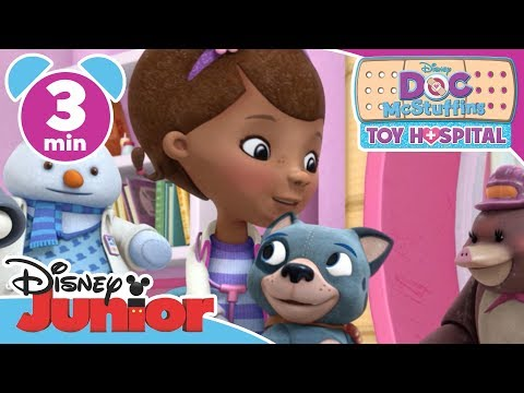 Doc McStuffins | Mountie and Me Song | Disney Junior UK