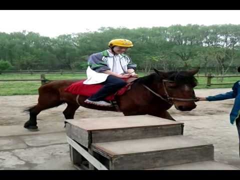 A horse ride at Hangzhou Zoo