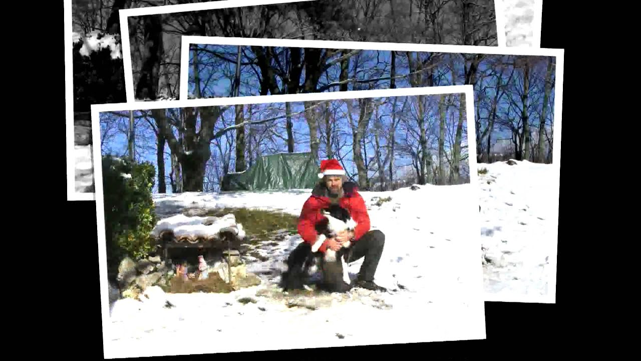 Natale BORDER COLLIE 2009 a Petrademone.. AUGURI A TUTTI !!!.mp4