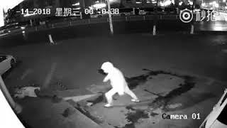 """بالفيديو.. لص يصيب زميله في """"أغبى عملية سرقة"""""""