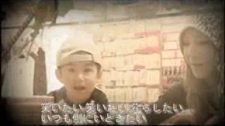 ZUKAN - シャイン