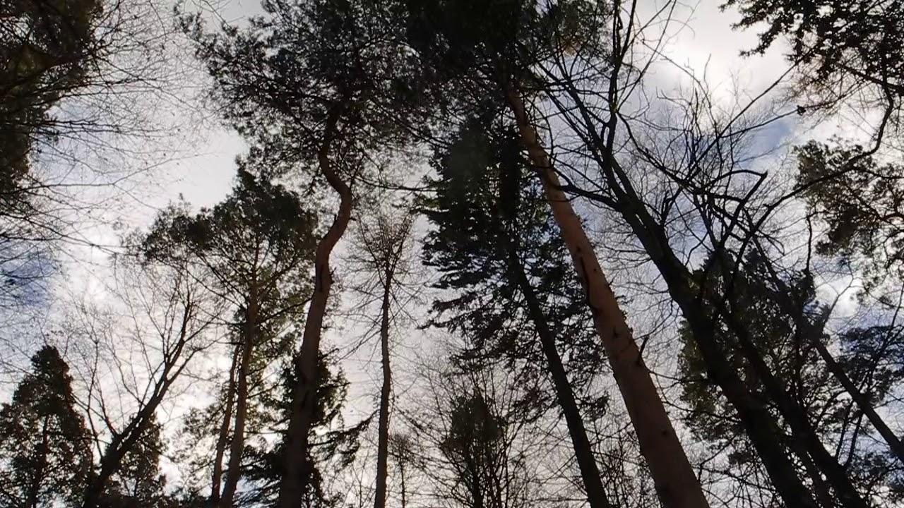 sturm westerwald