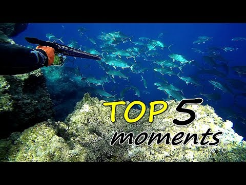 😲TOP 5 Moments Of Double 🎞 | Spearfishing The Aegean 🇬🇷 ✔