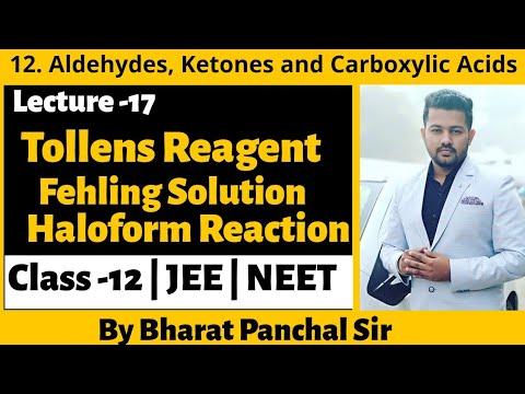 Class 12 | Unit 12 | 17 | Tollens Reagent Test | Fehling Solution Test | Haloform Reaction |