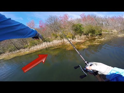 Spring Bass Fishing - How To Catch Bed Fish
