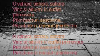 "Versuri Alex Velea feat Antonia feat Lino Golden &quotSahara"""
