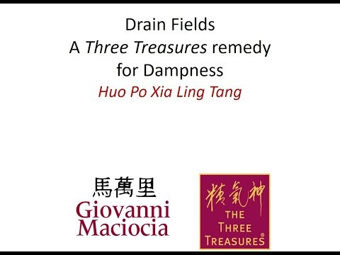 Drain Fields | Herbal Remedy for General Dampness