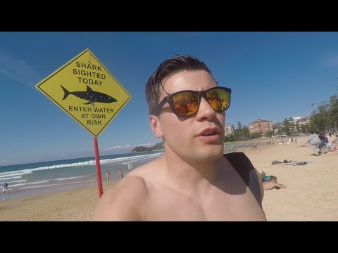 SWIMMING WITH SHARKS IN SYDNEY