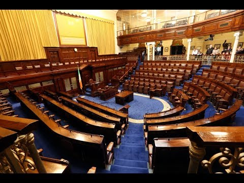 TDs are having their say on the proposed changes to Ireland's abortion laws