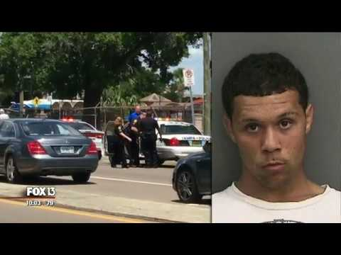 Good Samaritans help Tampa police officer fight off suspect