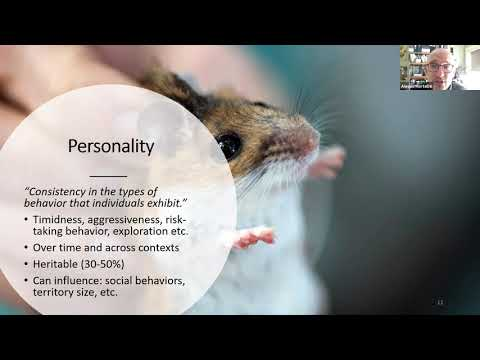 Lunch & Learn: Of Bold Mice and Shy Squirrels