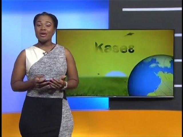 Badwam Intro on Adom TV (19-2-19)