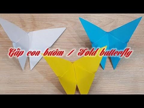 Origami - Gấp con bướm bằng giấy   Fold butterfly