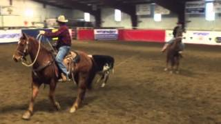 Lyle 11 Year Old Sorrel Gelding Feb BLS Horse Sale