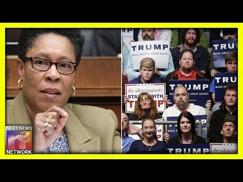 Democratic Lawmaker STUNS MANY As She BASHES Trump in 5 Minute Speech