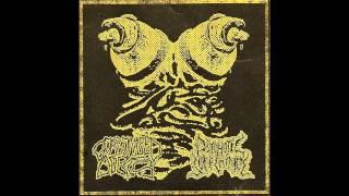 Psychotic Sufferance - 6 Untitled Tracks