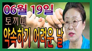 2020년 06월 19일 오늘의 운세 토끼띠 약속을 지키기 어려운 날 수미산당 구슬보살  010-6622-5…