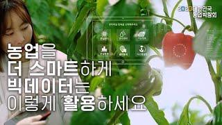 [농업 혁신기술 영상기획전]스마트팜 빅데이터 활용 단기…
