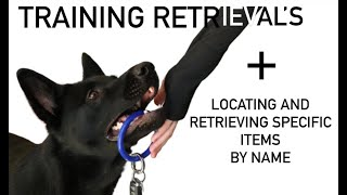 How to Train your Dog to Locate and Retrieve Items on Command
