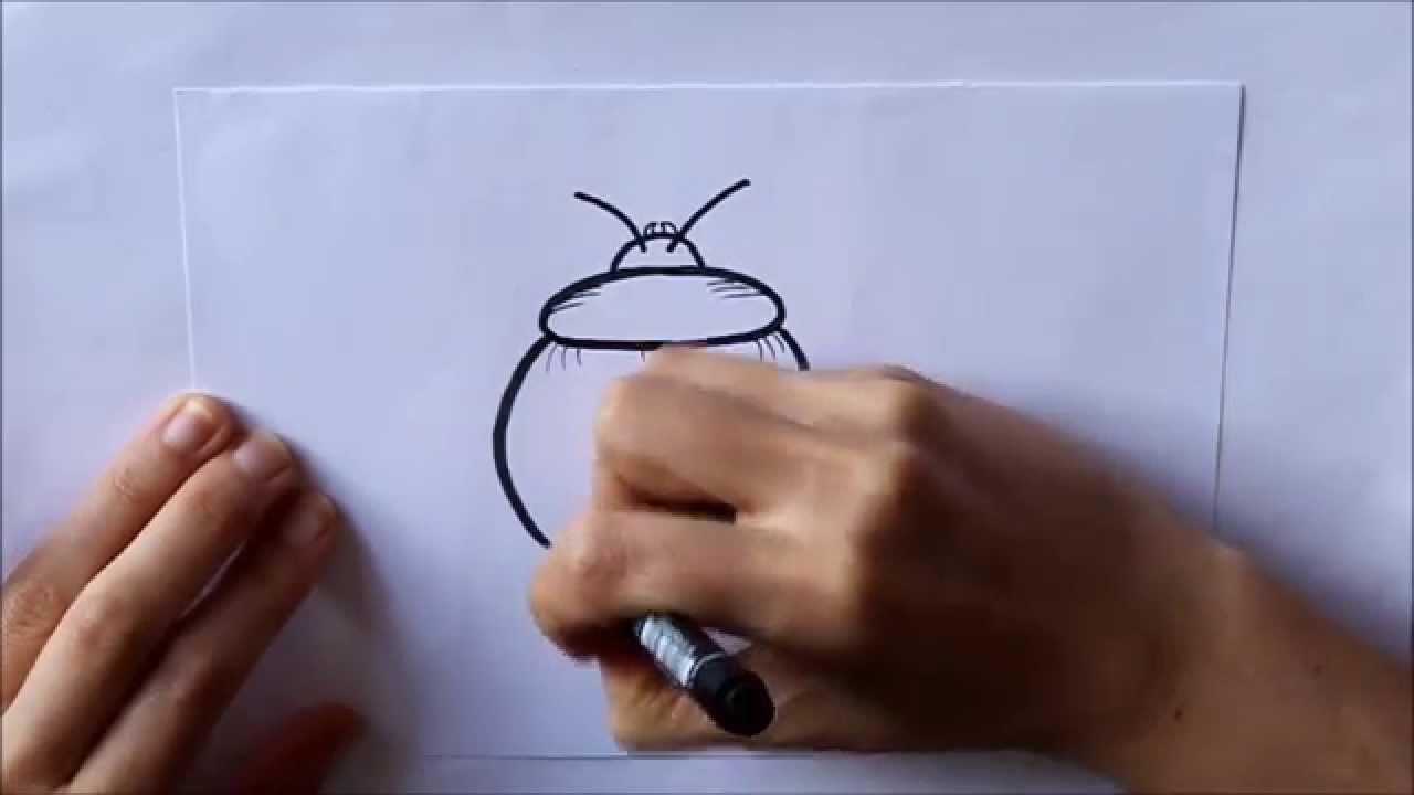 C mo dibujar un escarabajo f cil dibuja conmigo dibujos de for Comedor facil de dibujar