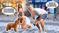 WILL SHE RECOGNISE HER OWN PUPPY IN PUBLIC?