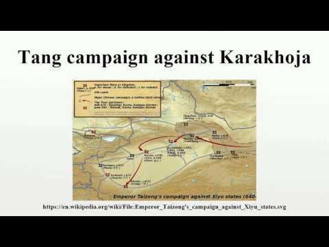 Tang campaign against Karakhoja