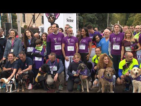 Más de 4.500 participantes acuden a la carrera solidaria Perrotón