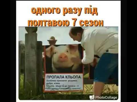 Одного разу під Полтавою 7 сезон 1 серия / дата вихода / 11.03.2019