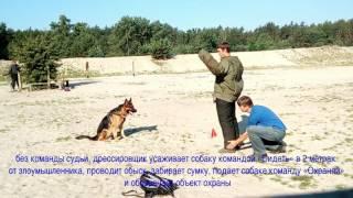 """УКД СТ (""""Собака телохранитель"""" )"""